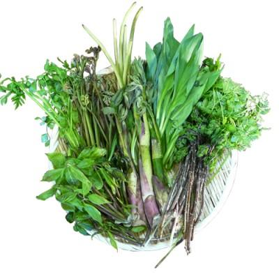 天然山菜おまかせセット2kg(採取者・笑顔の里)